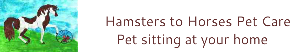 Hamsters to Horses Pet Care